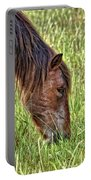 Wild Horses Of Assateague 3 Portable Battery Charger