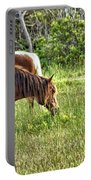 Wild Horses Of Assateague 5 Portable Battery Charger