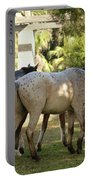 Wild Horses Of Cumberland Portable Battery Charger