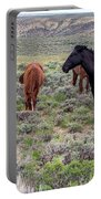 Wild Horses Of White Mountain Portable Battery Charger