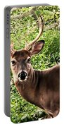 Wild In The Country Portable Battery Charger