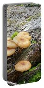 Wild Mushrooms 2 Portable Battery Charger