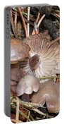 Wild Mushrooms Portable Battery Charger