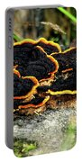 Wild Mushrooms Growing On Tree Trunk Portable Battery Charger
