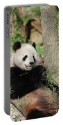 Wild Panda Bear Eating Bamboo Shoots While Leaning Against A Tre Portable Battery Charger