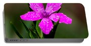 Wild Pink Portable Battery Charger