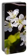 Wild Plum Blossom Portable Battery Charger
