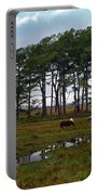Wild Ponies Of Assateague Portable Battery Charger