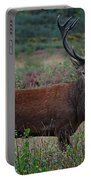 Wild Red Deer Stag Portable Battery Charger