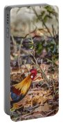 Wild Red Junglefowl Gallus Gallus Kanha National Park India Portable Battery Charger