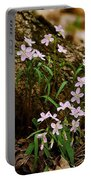 Wild Spring Beauty Portable Battery Charger