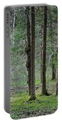 Wild Spring Forest Portable Battery Charger