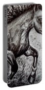 Wild Stallion Portable Battery Charger