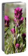 Wild Treasure Portable Battery Charger