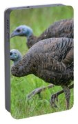 Wild Turkey In Shiloh Military Park Portable Battery Charger