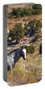 Wild Wyoming Portable Battery Charger