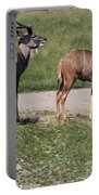 Wildebeest II Portable Battery Charger