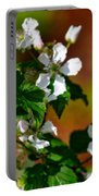 Wildflower 4 Portable Battery Charger