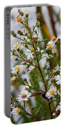 Wildflower,  Portable Battery Charger