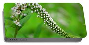 Wildflower Slide Portable Battery Charger