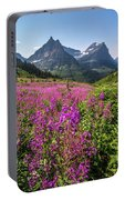 Wildflowers And A Glacier Portable Battery Charger
