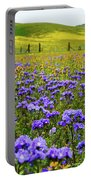 Wildflowers Carrizo Plain Portable Battery Charger