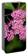 Wildflowers Come In Many Sizes Portable Battery Charger