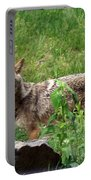Wiley Coyote Portable Battery Charger