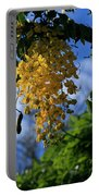 Wilhelmina Tenney Rainbow Shower Tree Makawao Maui Flowering Trees Of Hawaii Portable Battery Charger