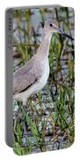 Willet On Beach Portable Battery Charger