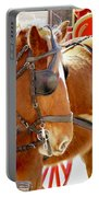 Williamsburg Carriage Horse Portable Battery Charger