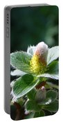 Willow Flower Portable Battery Charger