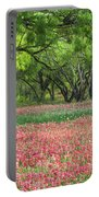 Willows,indian Paintbrush Make For A Colorful Palette. Portable Battery Charger