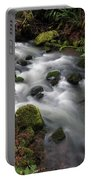 Wilson Creek #15 Portable Battery Charger