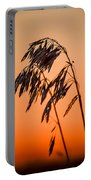 Wilting Sunset Portable Battery Charger