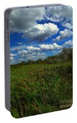 Wind In The Cattails Portable Battery Charger