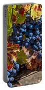 Wine Grapes Napa Valley Portable Battery Charger