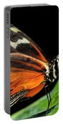 Wing Texture Of Eueides Isabella Longwing Butterfly On A Leaf Ag Portable Battery Charger