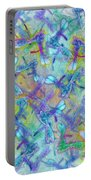 Wings IIi Large Image Portable Battery Charger