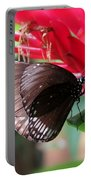 Wings Of Brown - Butterfly Portable Battery Charger