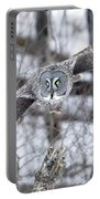 Wings Wide Open Portable Battery Charger