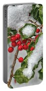 Winter - Ice Coated Holly Portable Battery Charger