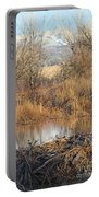 Winter Beaver Dam Charm Co     Portable Battery Charger