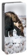 Winter Buddies Portable Battery Charger