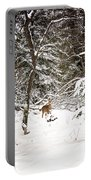 Winter Doe In The Upper Peninsula Portable Battery Charger
