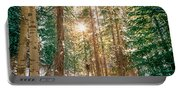 Winter Forest Sunshine Portable Battery Charger