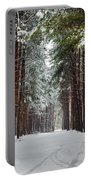 Winter Forest Portable Battery Charger