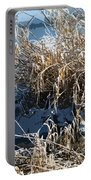 Winter Grass Portable Battery Charger