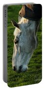 Winter Horse 4 Portable Battery Charger