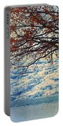 Winter In Peachland Portable Battery Charger